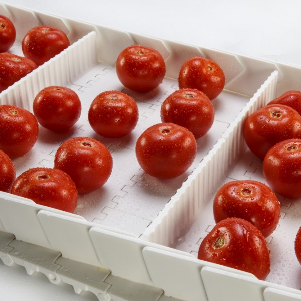 Taśmy modułowe do transportu produktów spożywczych masowych